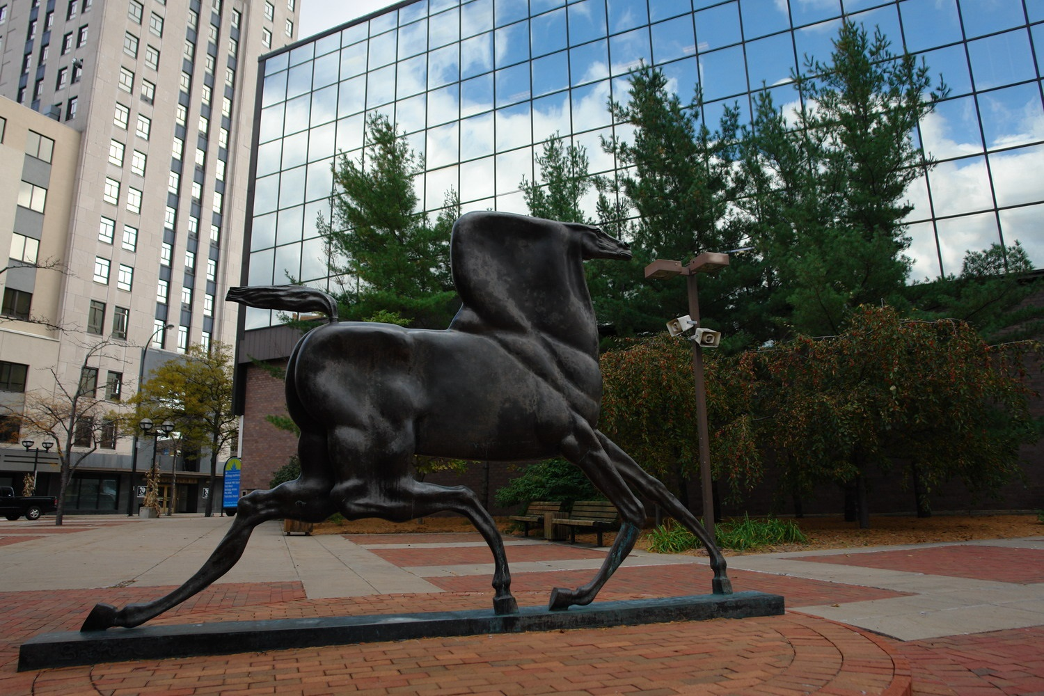 downtown horse